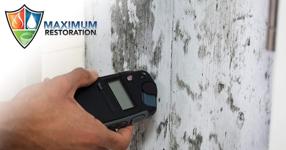 Professional Mold Remediation in Kettering, OH