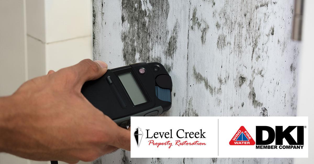Mold Mitigation in Johns Creek, GA