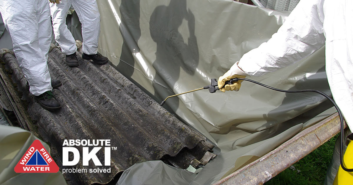 Asbestos Removal in Paddock Lake, WI