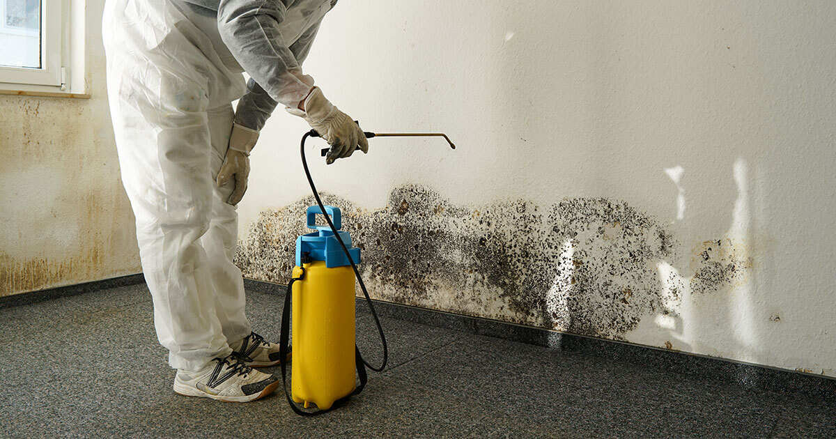 Professional Mold Mitigation in Racine, WI