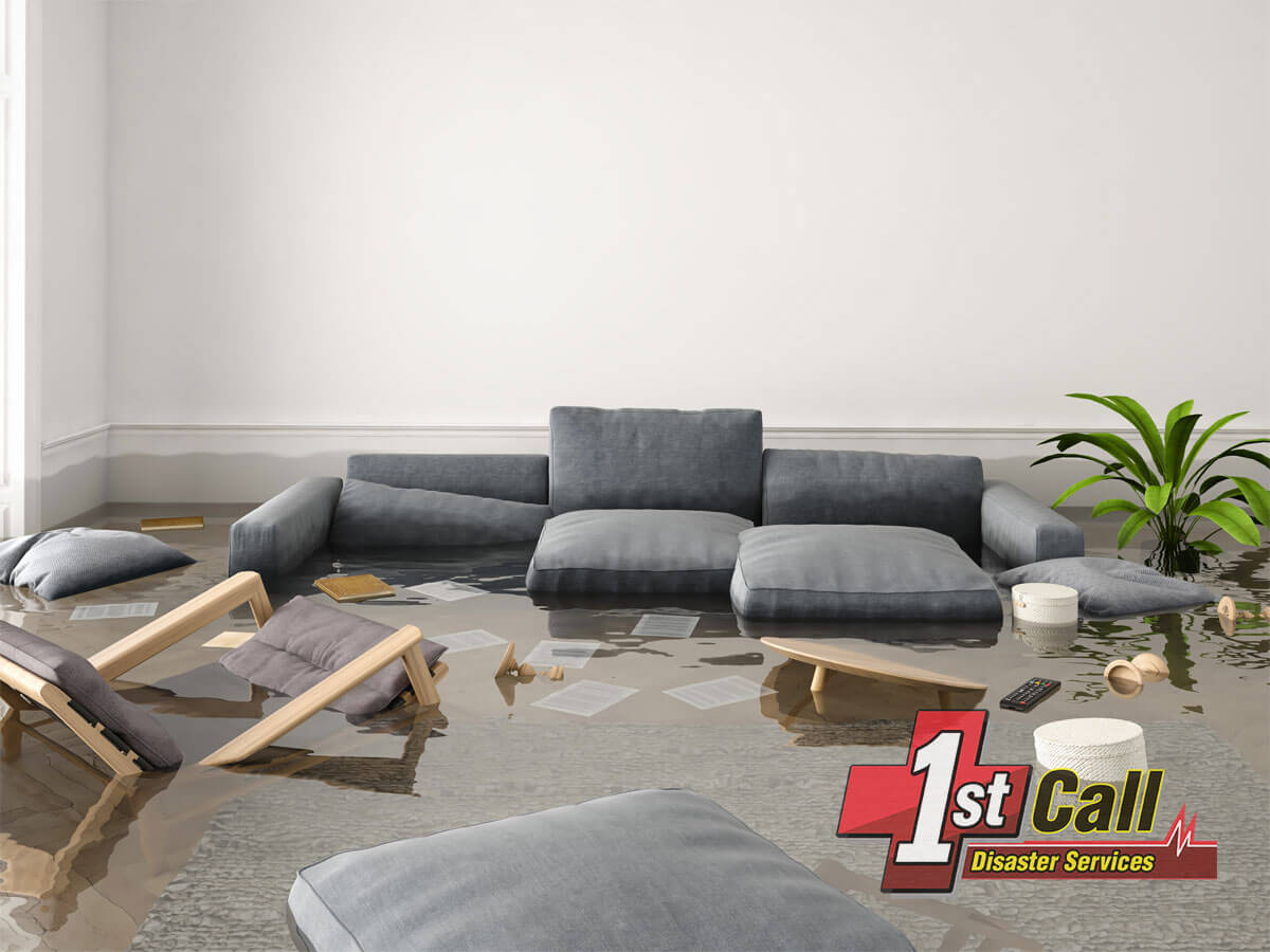 Water Damage Mitigation in Edgewood, KY