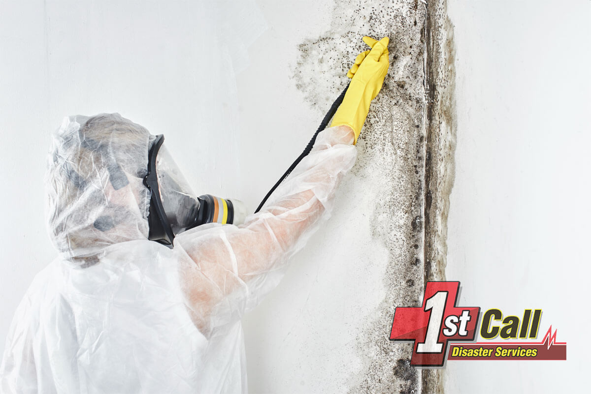 Mold Mitigation in Crescent Springs, KY