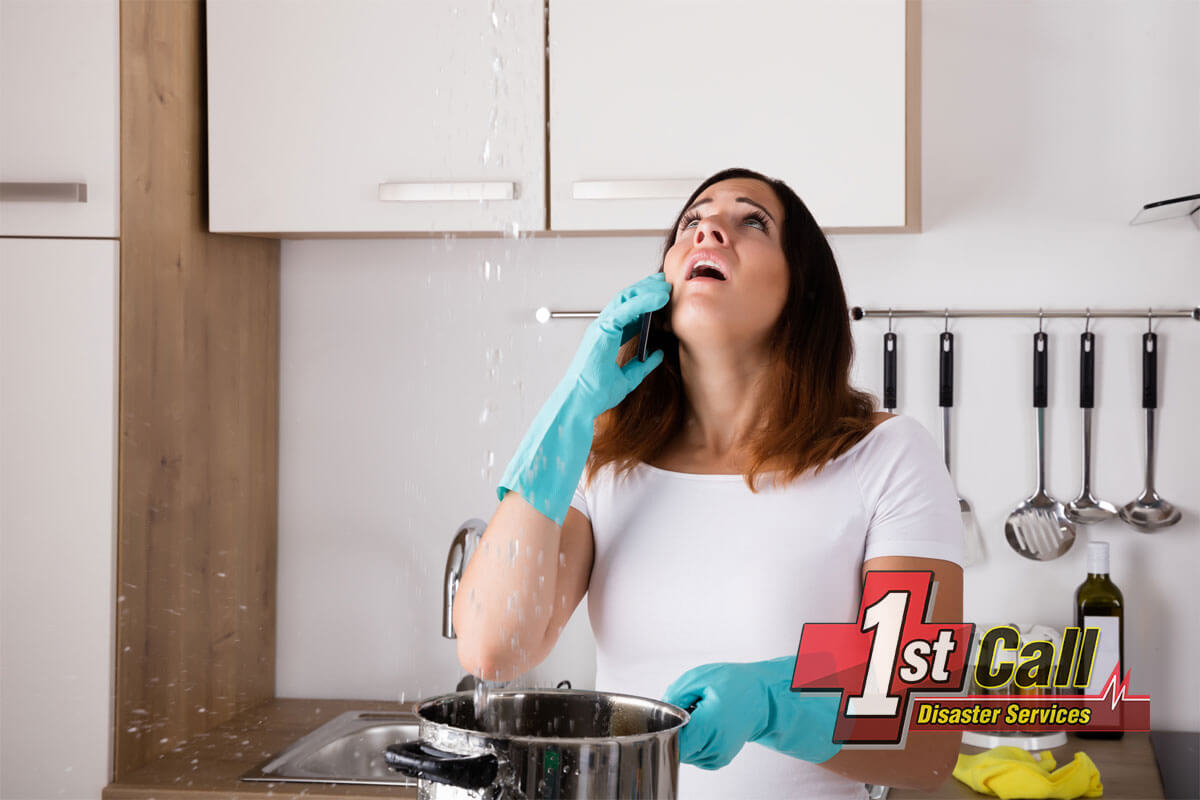 Deodorizing and Disinfecting in Erlanger, KY