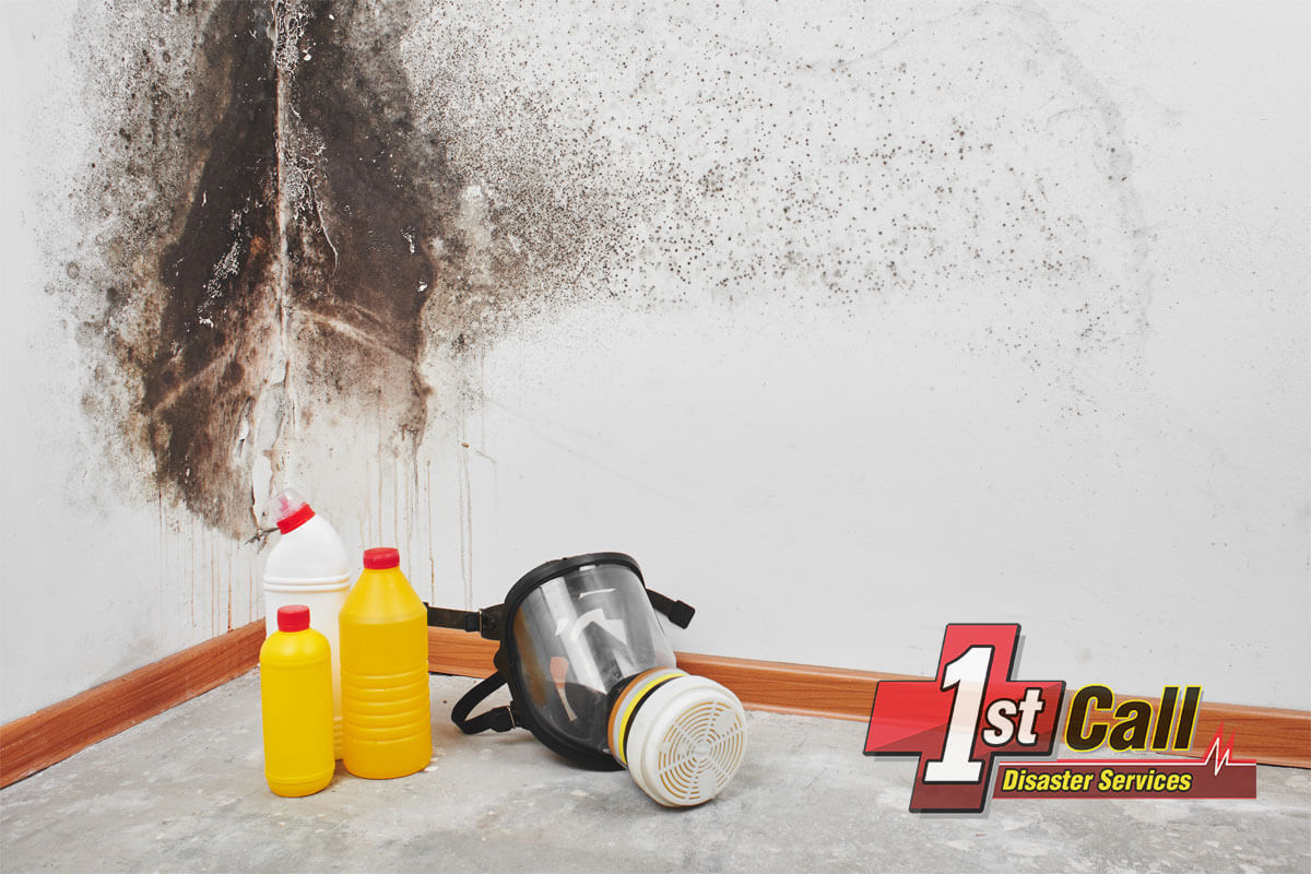 Mold Mitigation in Southgate, KY