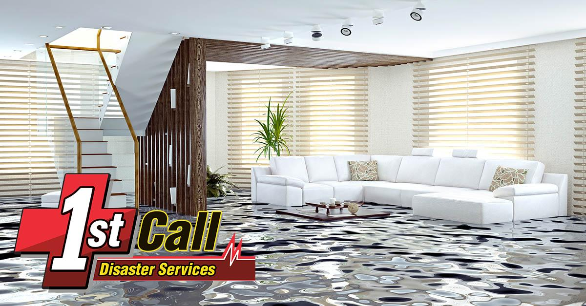 Professional Water Removal in Newport, KY