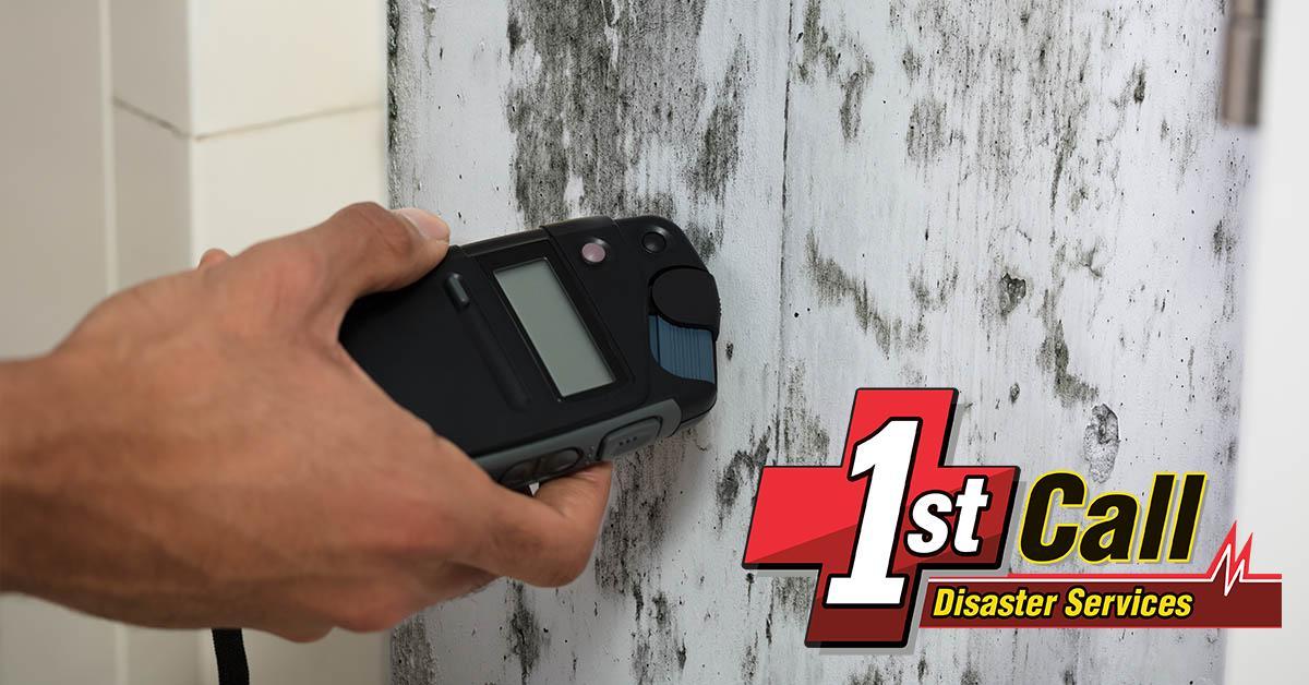 Certified Mold Damage Restoration in Dayton, KY