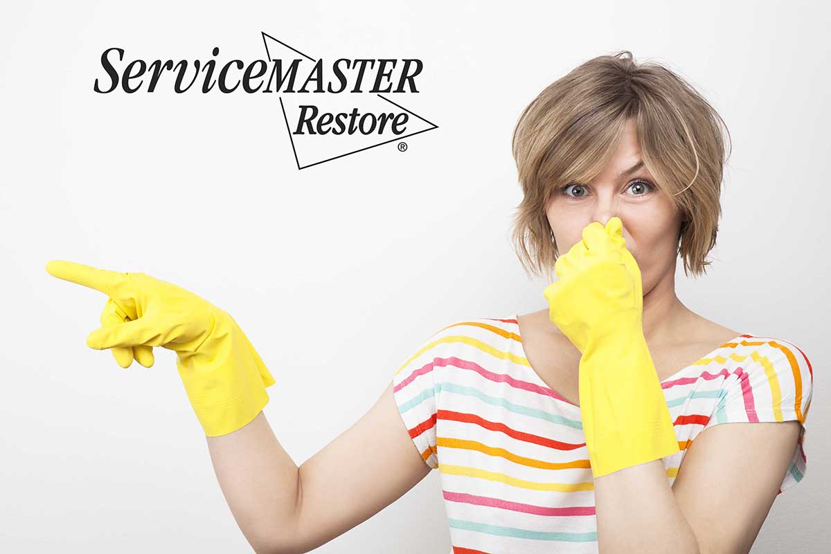 Odor Removal in Boonesborough, KY