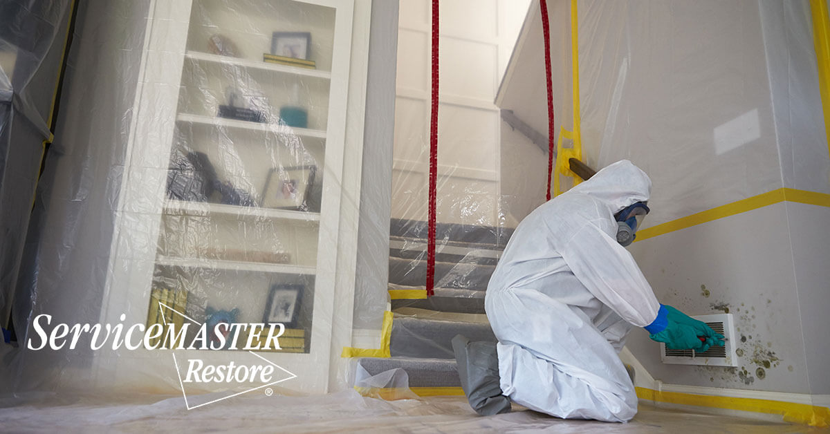Mold Remediation in Norwood, KY