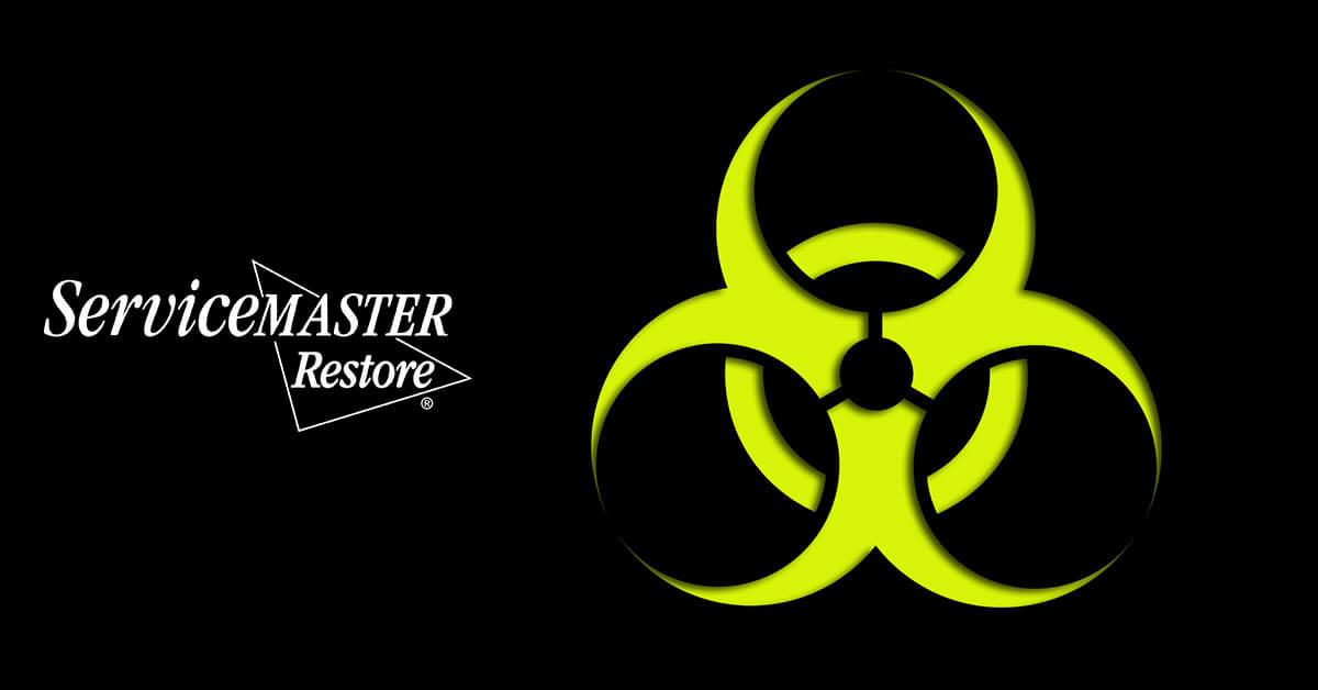 Biohazard Material Removal in Alcalde, KY