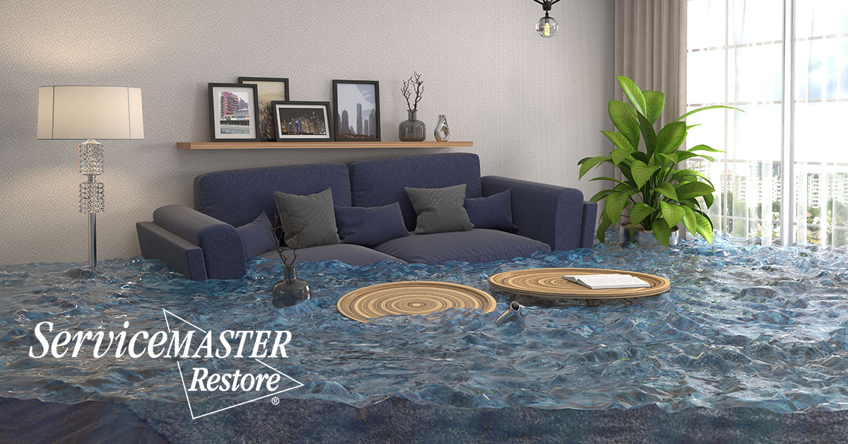 Water Damage Restoration in Bee Lick, KY