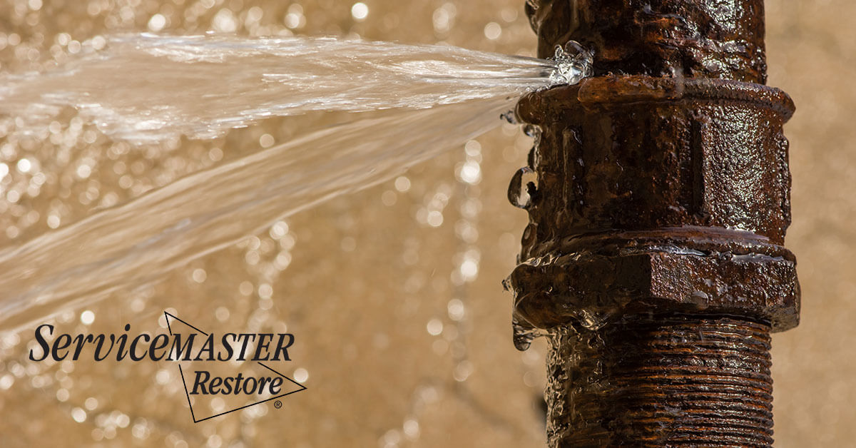 Water Cleanup in Boonesborough, KY