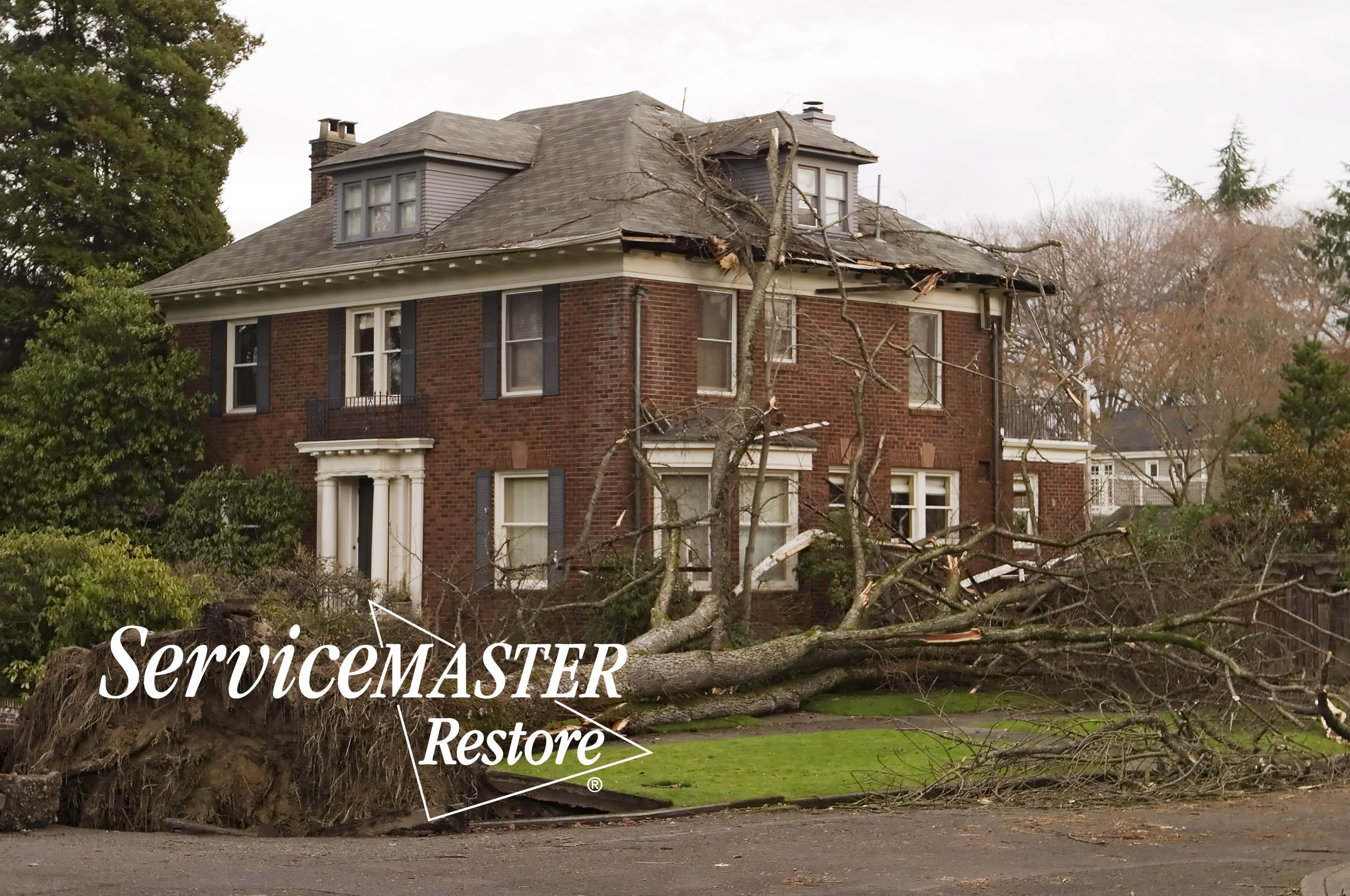Wind Damage Cleanup in Tateville, KY
