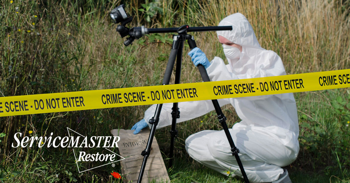 Forensic Cleaning Services in Blue John, KY