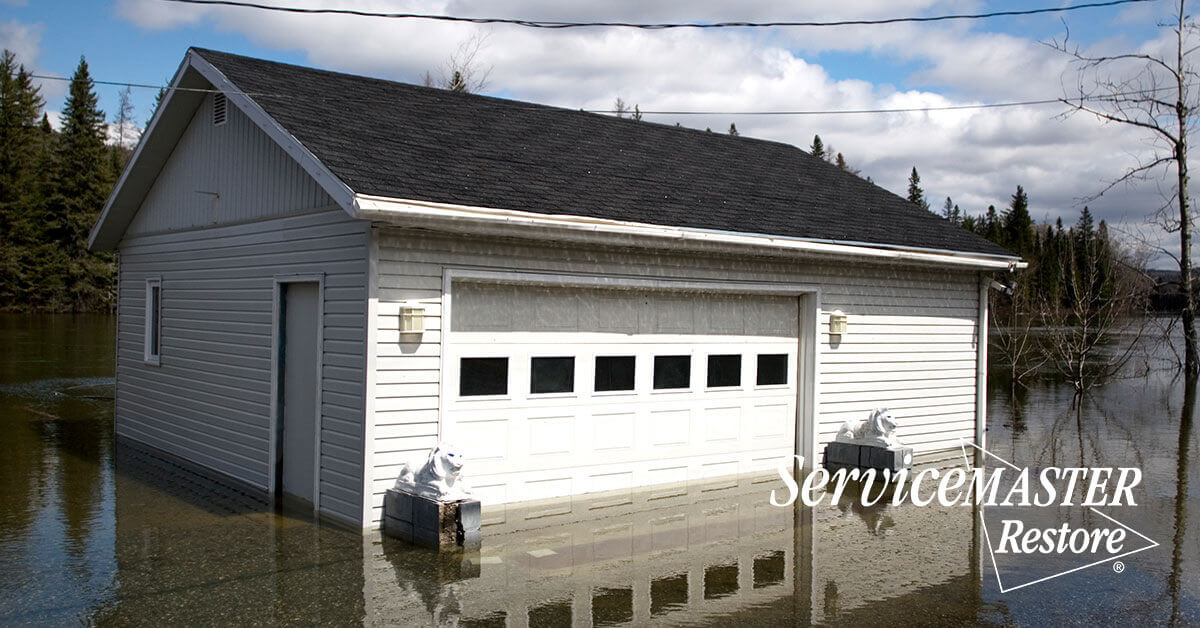 Flood Damage Repair in Alcalde, KY
