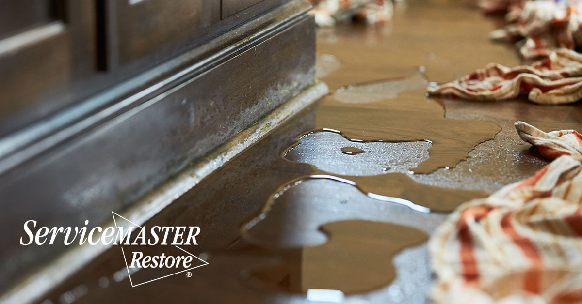 Water Damage Cleanup in Richmond, KY
