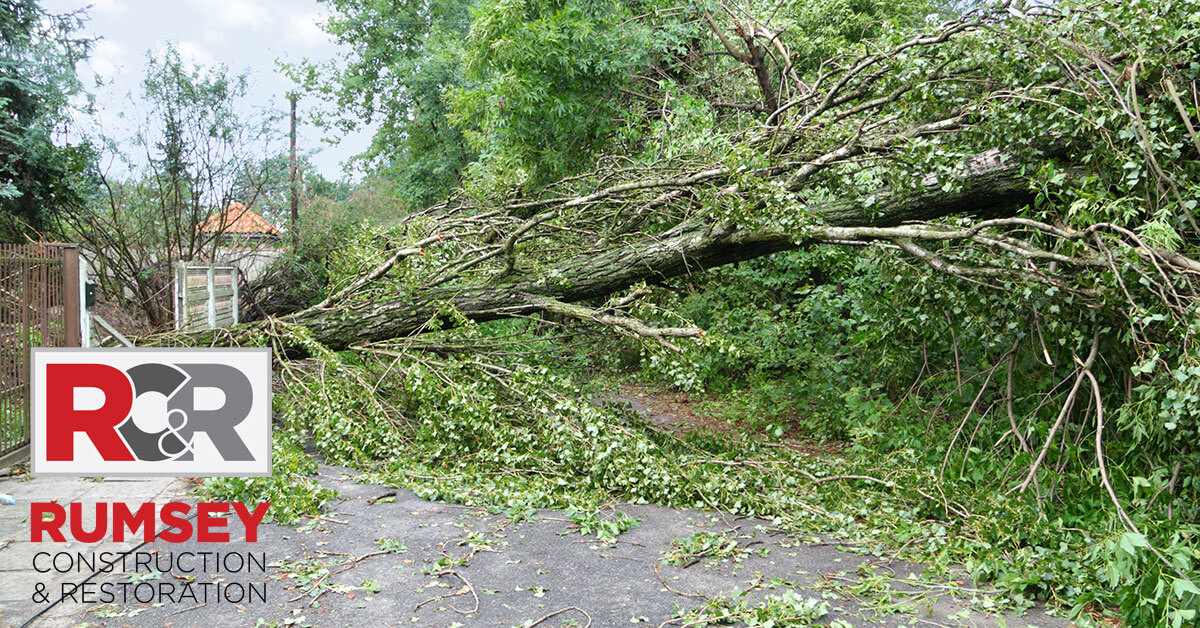 Storm Damage Remediation in Mount Holly, NC