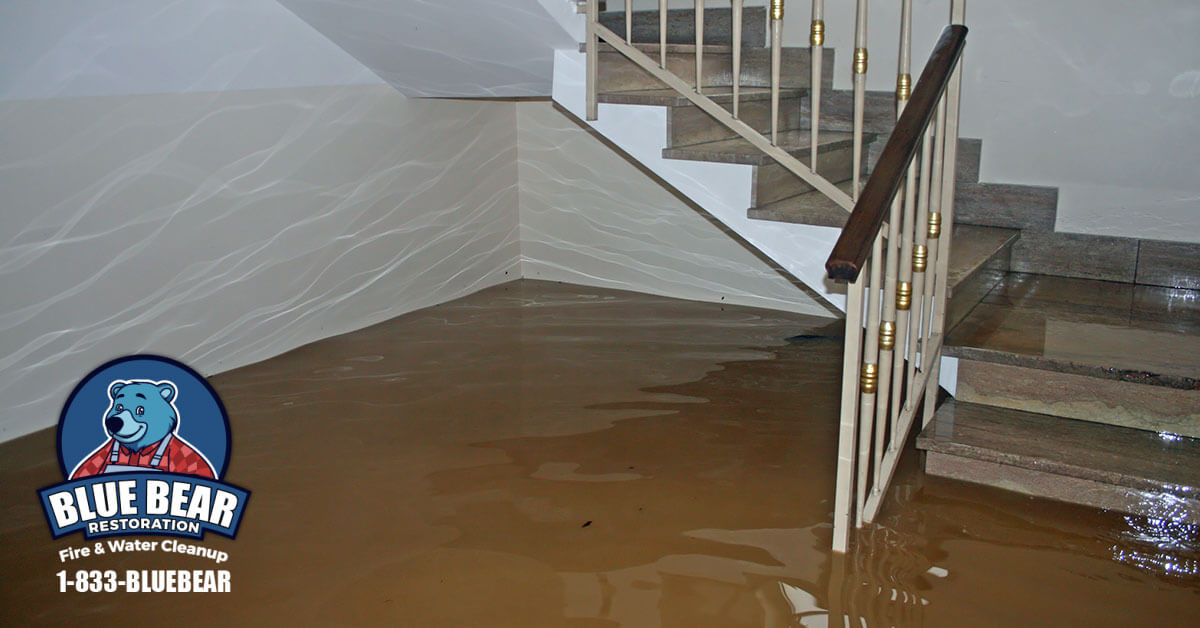 Water Damage Cleanup in Rochester, NY