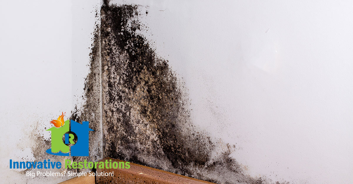 Mold Remediation in Crossville, TN