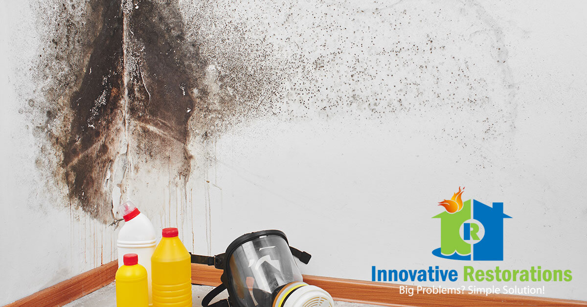 Mold Remediation in Monterey, TN