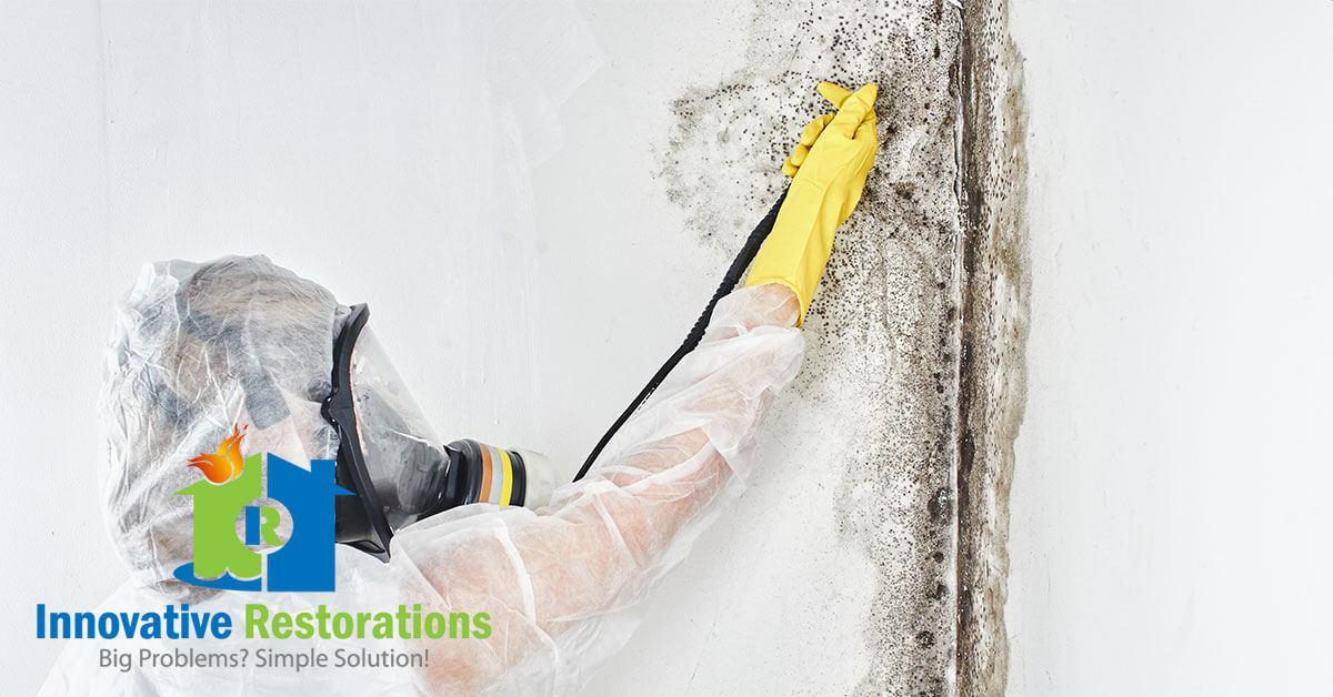 Mold Removal in Crossville, TN