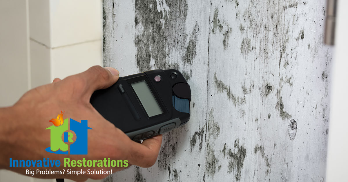 Mold Removal in Harriman, TN