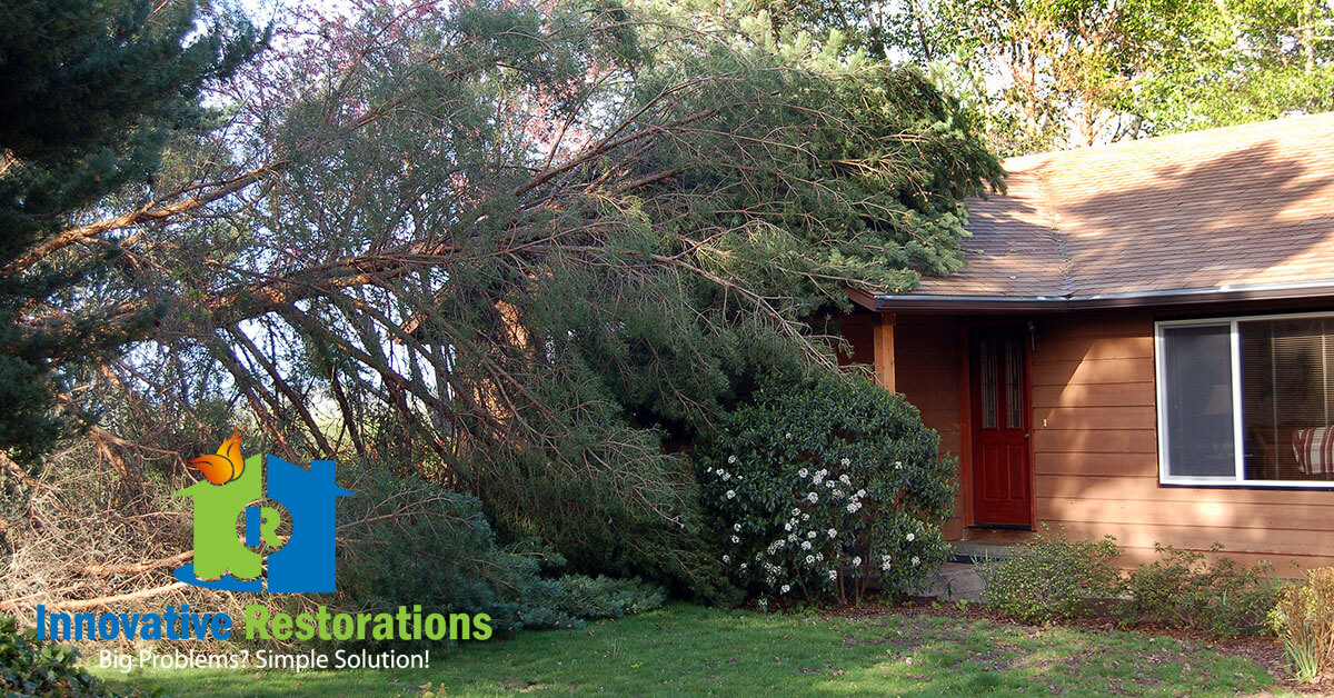 Storm Damage Repair and Debris Removal in Pleasant Hill, TN
