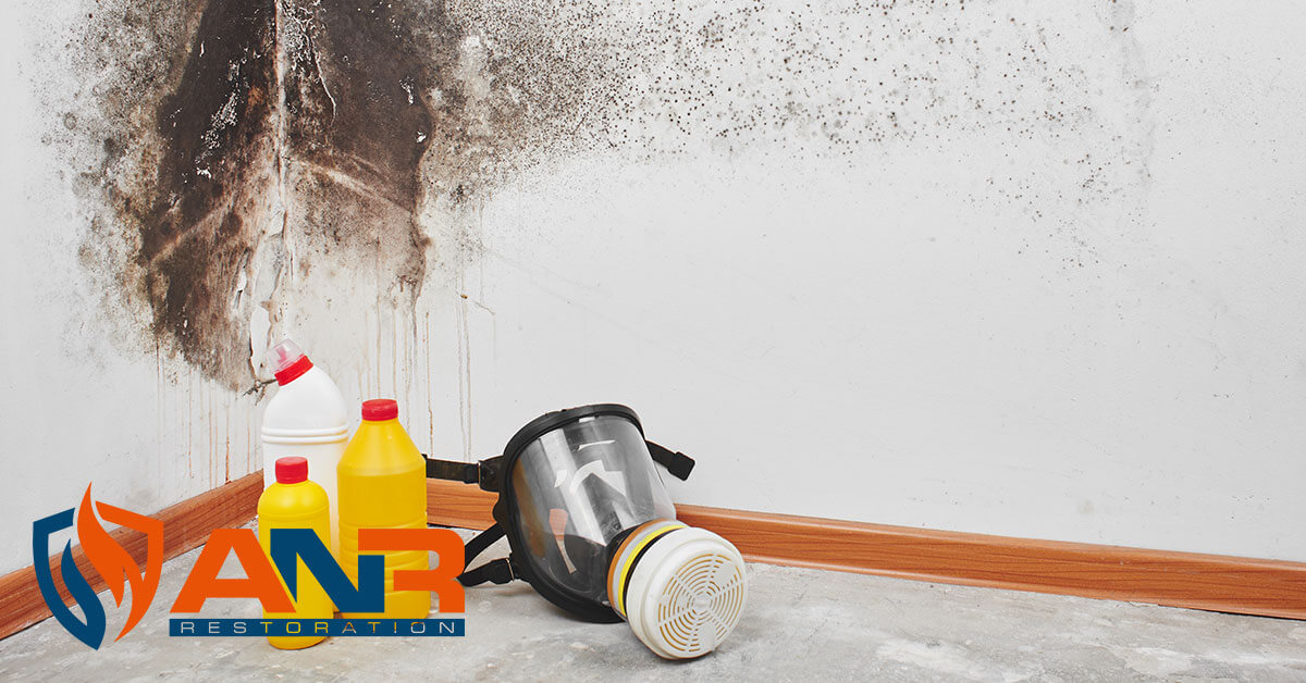 Mold Remediation in Galena, IN