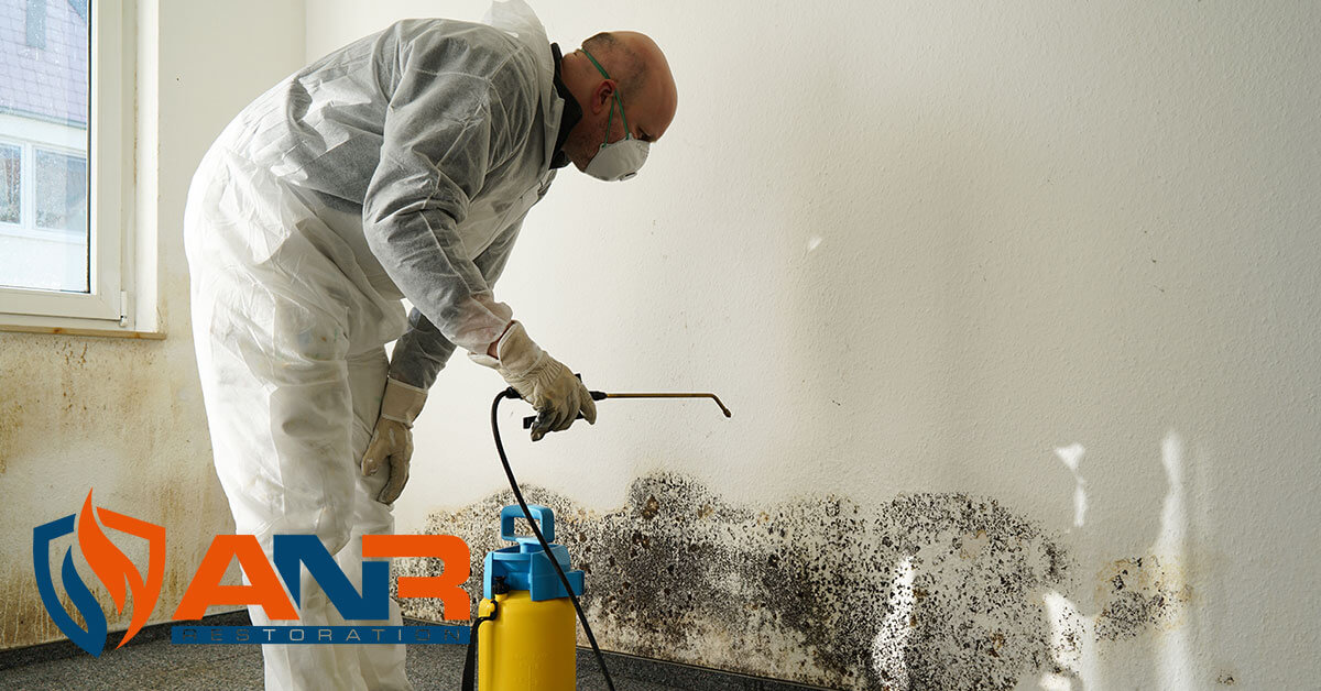Mold Abatement in Charlestown, IN