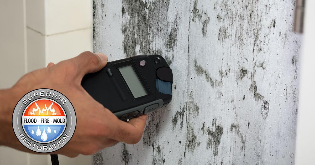 Mold Damage Restoration in Irvine, CA