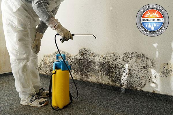 Professional Mold Mitigation in Orange County, CA