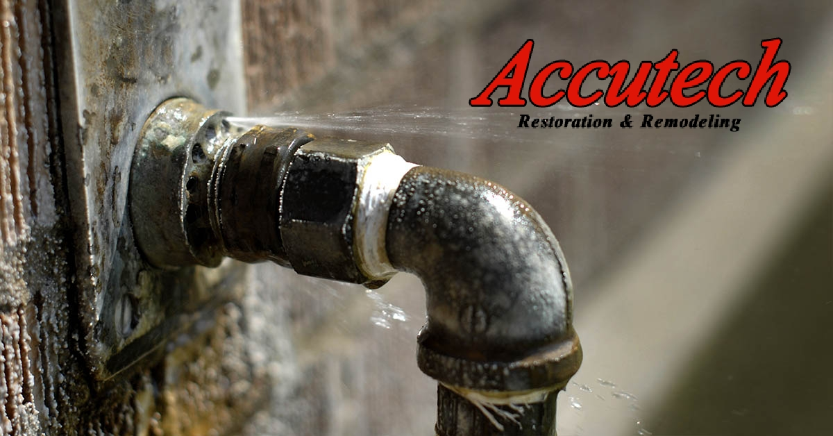 Water Mitigation in Port Charlotte, FL