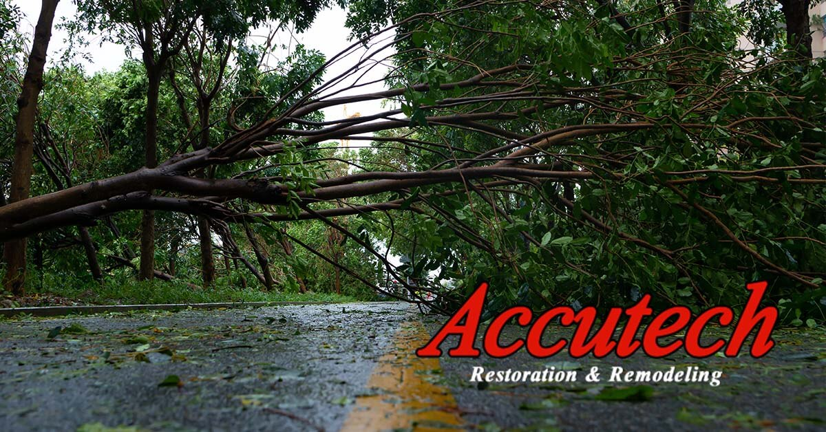 Wind Damage Restoration in Bradenton, FL