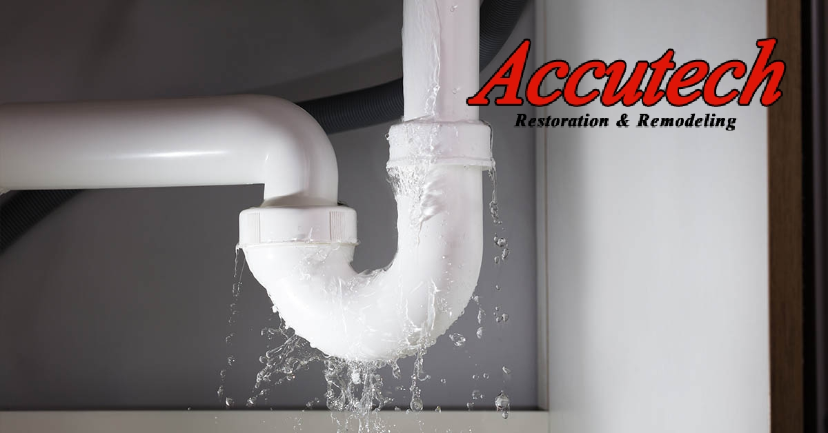 Water Damage Remediation in Venice, FL