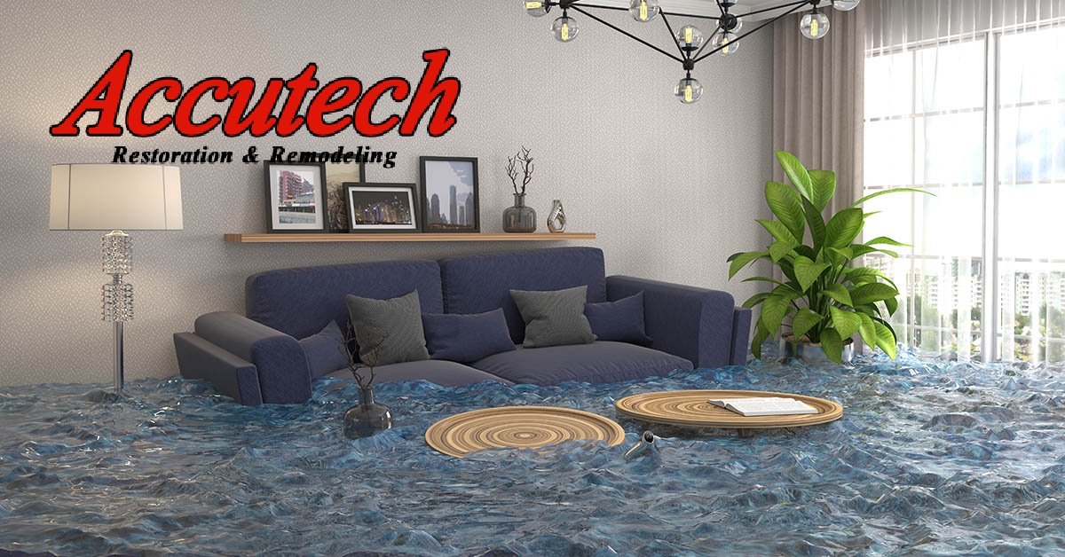 Water Damage Mitigation in South Venice, FL