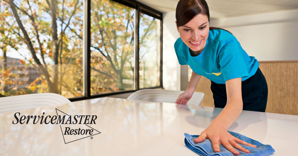 Business Cleaning Services in Hood, CA