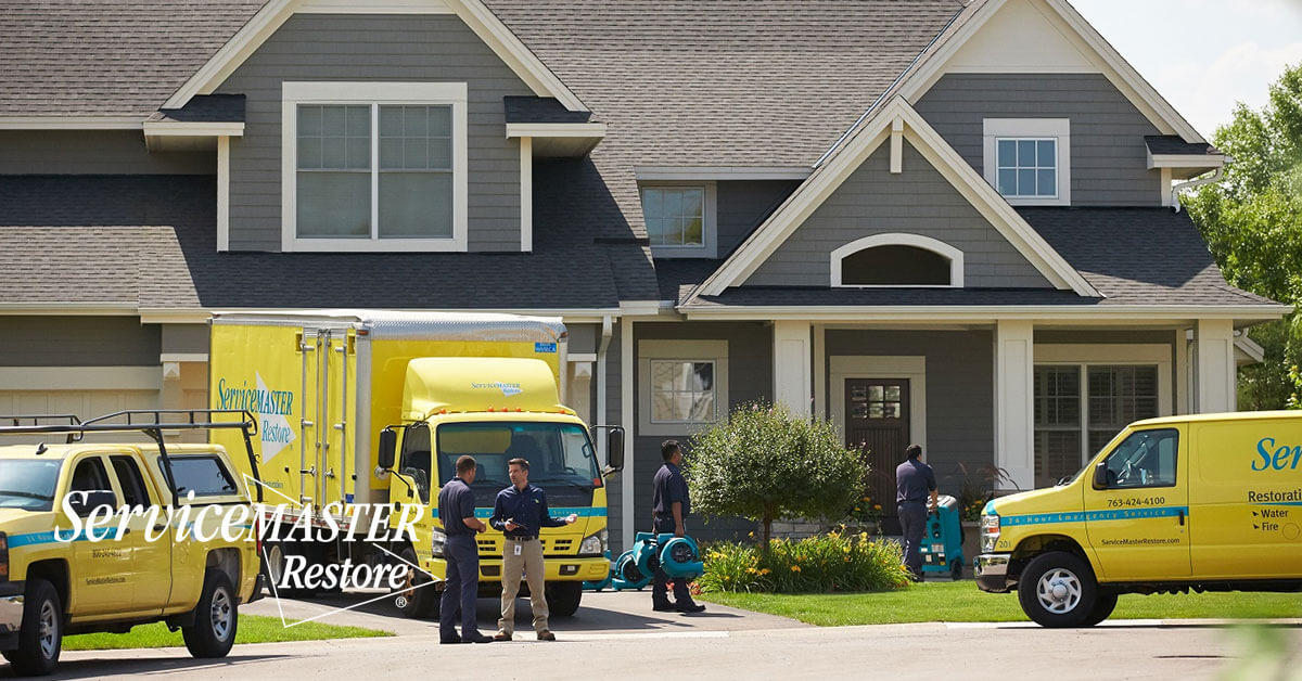 Professional Water Damage Cleanup in Gold River, CA