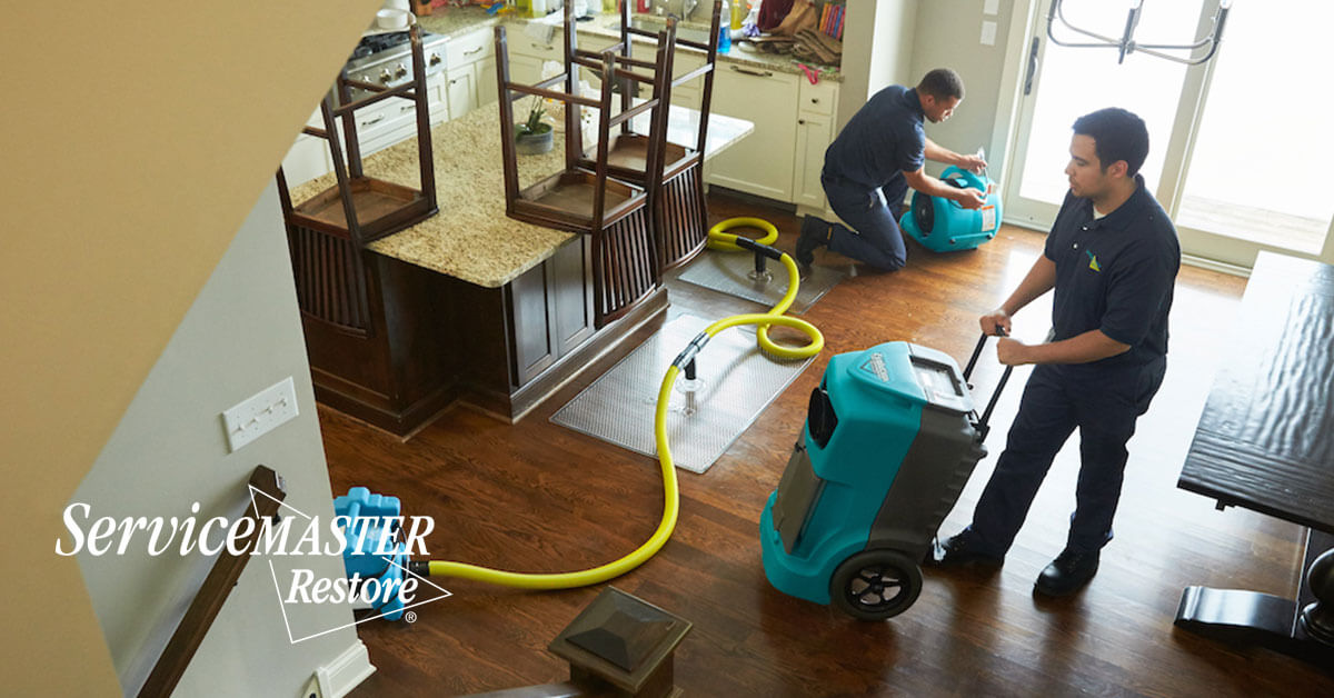 Certified Water Damage Cleanup in Hood, CA