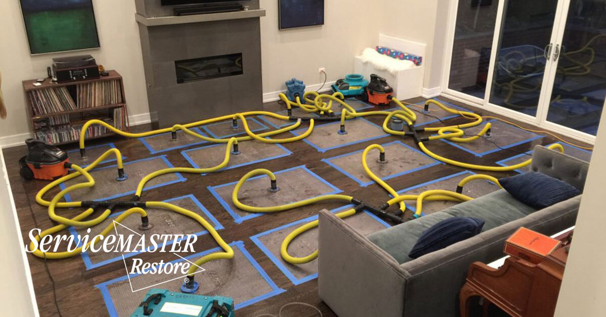 Certified Water Damage Mitigation in Madison, CA