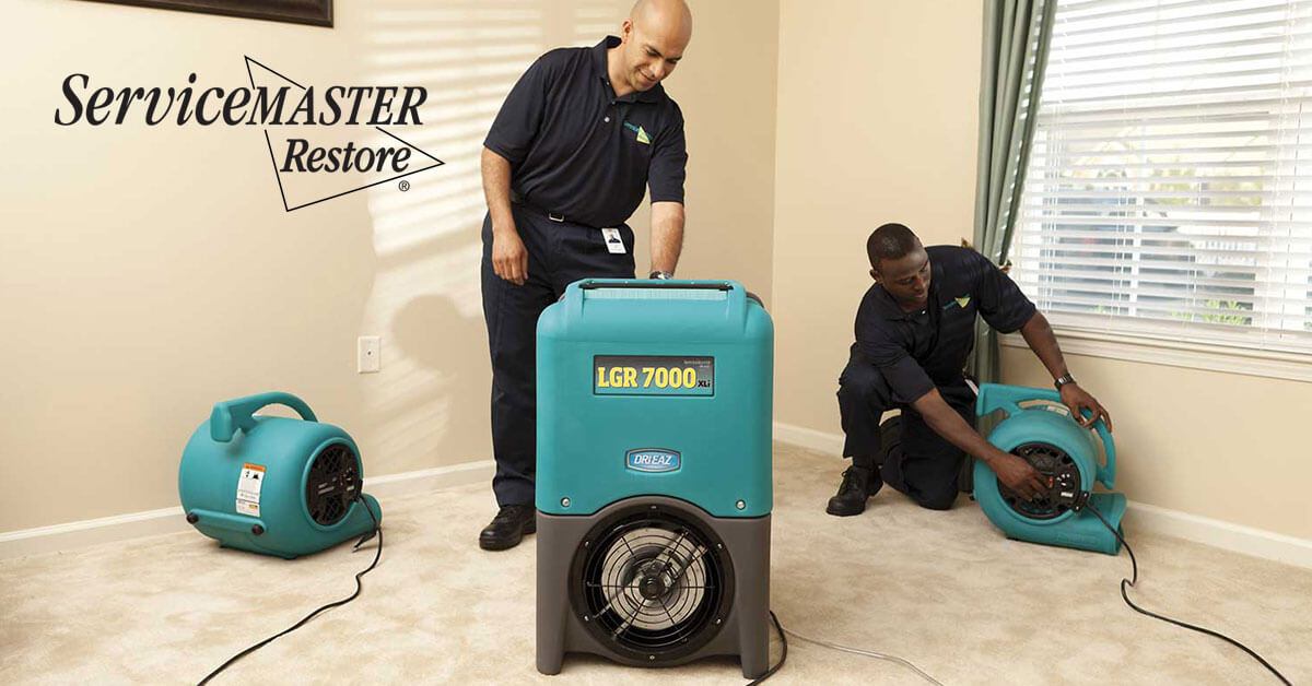 Professional Water Damage Repair in Folsom, CA