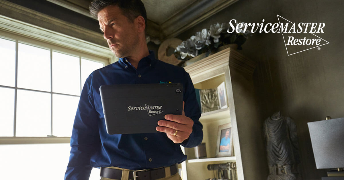 Professional Smoke and Soot Damage Restoration in Rosemont, CA