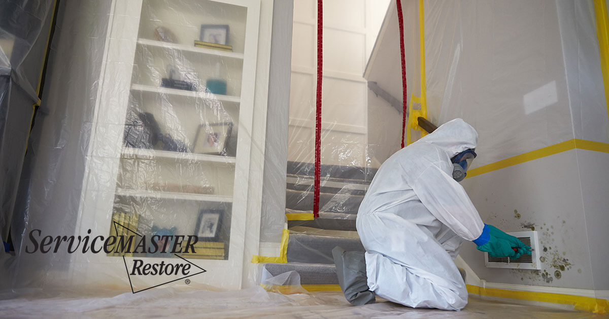 Professional Mold Remediation in Broderick, CA