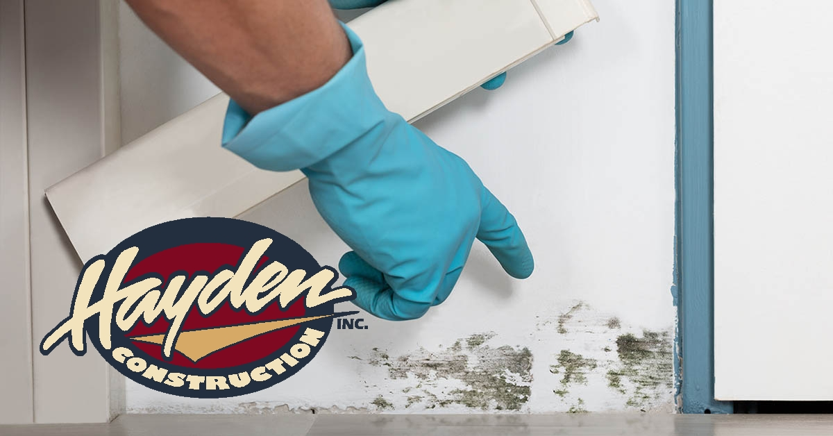 Mold Removal in Pinehurst, NC