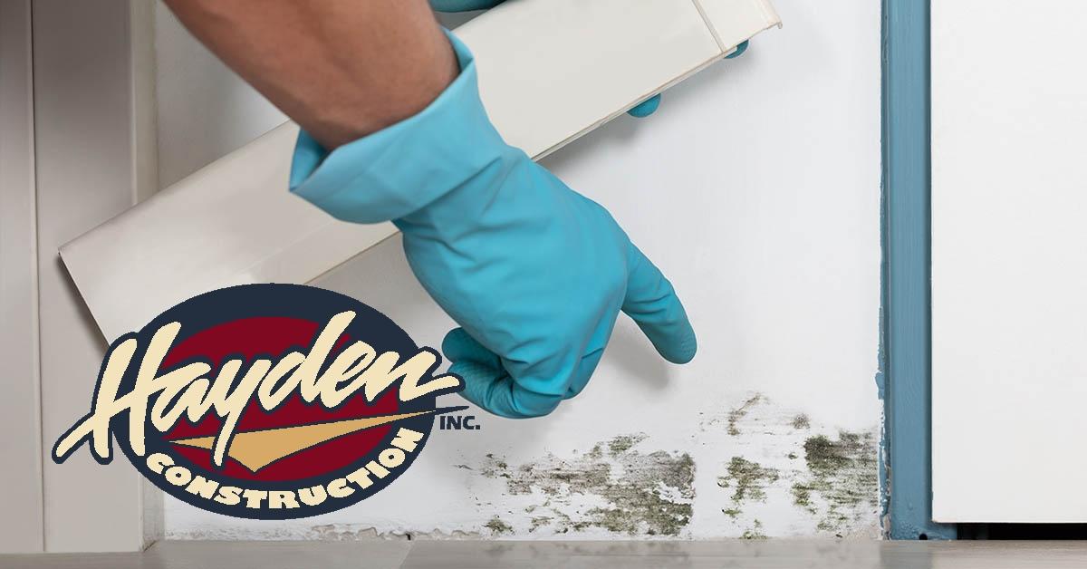 Mold Abatement in Pinehurst, NC