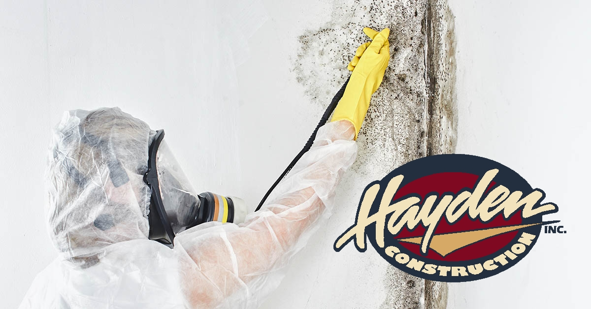 Mold Remediation in Southern Pines, NC