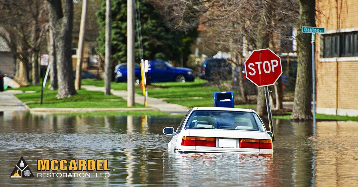 Water Damage Repair in Grand Ledge, MI