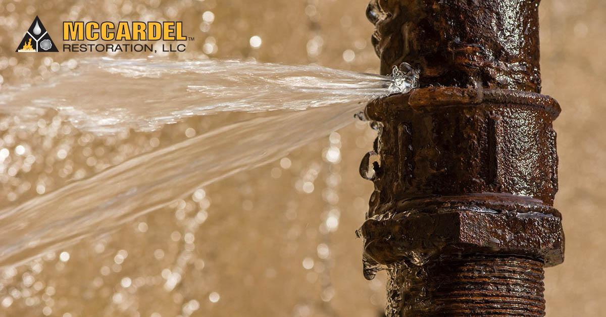 Water Damage Remediation in Okemos, MI