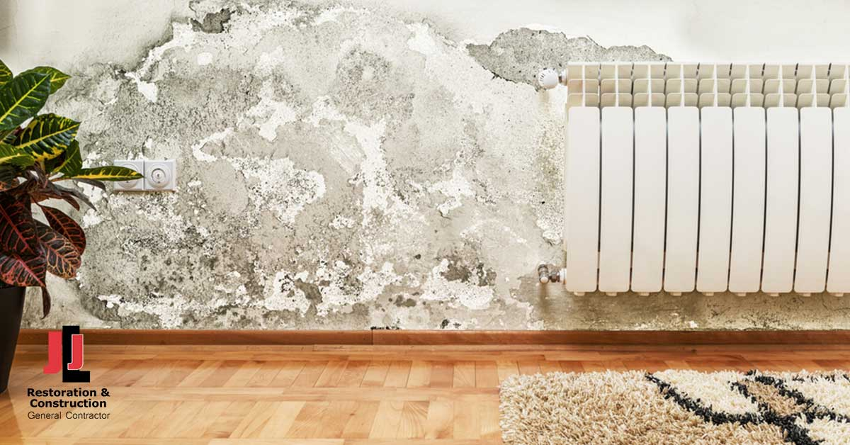 Mold Damage Restoration in New Kent, VA