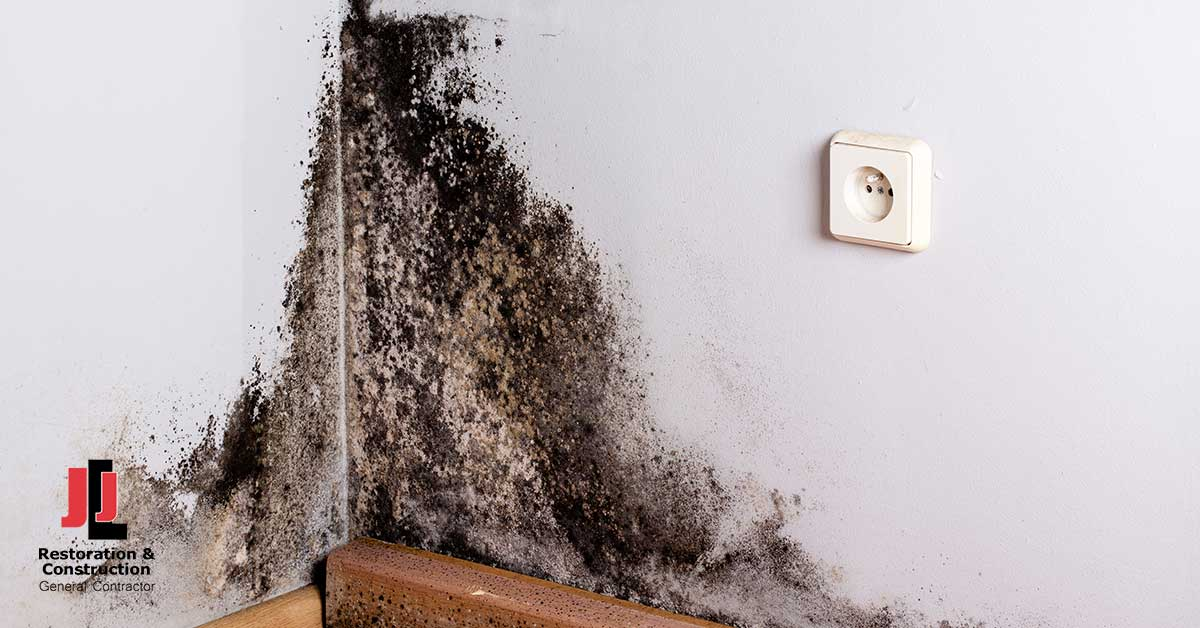 Mold Removal in Fort Lee, VA