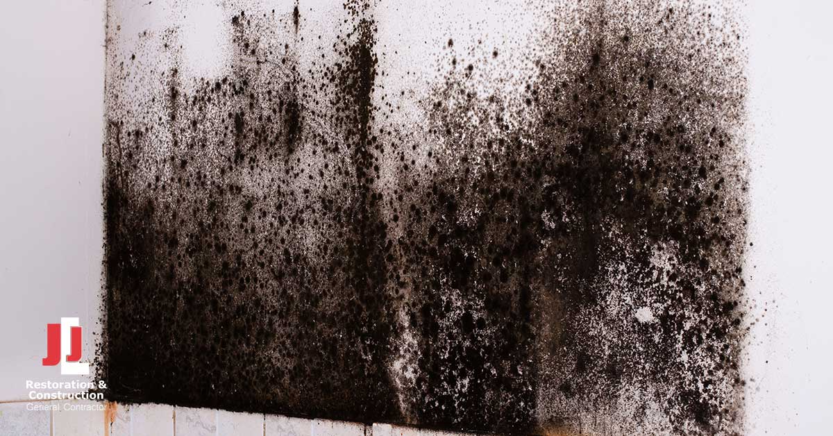 Mold Damage Restoration in Charles City, VA