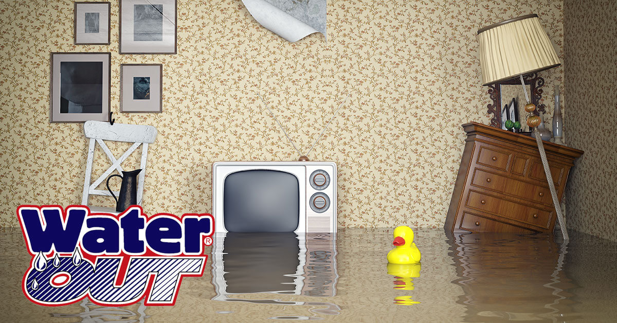Water Damage Cleanup in New Haven,IN